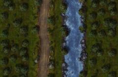 Single Battle Map (11x17)