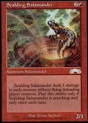 Scalding Salamander