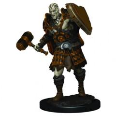 D&D: IR: Prem: Male Goliath Fighter