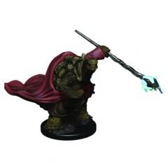 D&D: IR: Prem: Male Tortle Monk