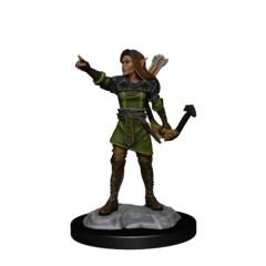 D&D: NMU: Elf Ranger Female W13