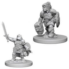 WZK D&D NMU: Dwarf Female Paladin