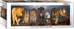 Big Cats - Panoramic 1000 pc puzzle