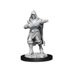 Pathfinder Battles Deep Cuts Miniatures - Male Human Rogue