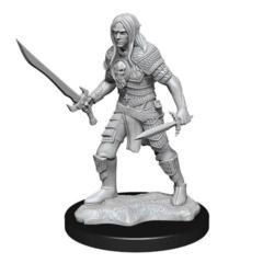 Pathfinder Battles Deep Cuts Miniatures - Male Elf Fighter