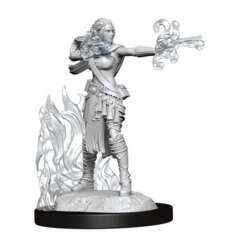 DUNGEONS AND DRAGONS NOLZUR'S MARVELOUS MINIATURES: W13 FEMALE MULTICLASS WARLOCK-SORCERER
