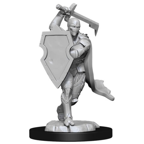 DUNGEONS AND DRAGONS NOLZURS MARVELOUS MINIATURES: W13 MALE WARFORGED FIGHTER