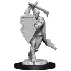 DUNGEONS AND DRAGONS NOLZUR'S MARVELOUS MINIATURES: W13 MALE WARFORGED FIGHTER