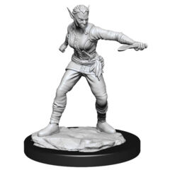 DUNGEONS AND DRAGONS NOLZUR'S MARVELOUS MINIATURES: W13 FEMALE SHIFTER ROGUE FEMALE