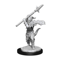 DUNGEONS AND DRAGONS NOLZUR'S MARVELOUS MINIATURES: W13 BEARDED DEVILS