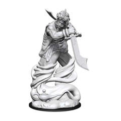 DUNGEONS AND DRAGONS NOLZUR'S MARVELOUS MINIATURES: W13 DJINNI