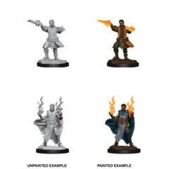 DUNGEONS AND DRAGONS: NOLZUR'S MARVELOUS UNPAINTED MINIATURES: W12 MALE HUMAN SORCERER