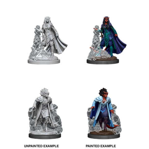 DUNGEONS AND DRAGONS: NOLZURS MARVELOUS UNPAINTED MINIATURES: W12 FEMALE TIEFLING SORCERER