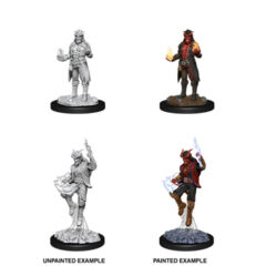 DUNGEONS AND DRAGONS: NOLZUR'S MARVELOUS UNPAINTED MINIATURES: W12 MALE TIEFLING SORCERER
