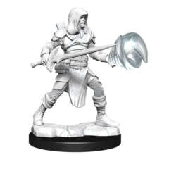 DUNGEONS AND DRAGONS NOLZUR'S MARVELOUS MINIATURES: W13 MALE MULTICLASS FIGHTER-WIZARD