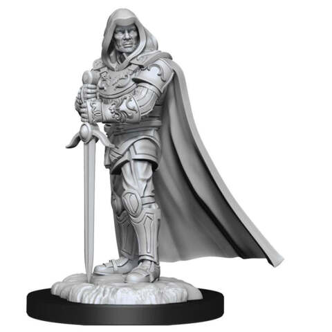 DUNGEONS AND DRAGONS NOLZURS MARVELOUS MINIATURES: W13 MALE HUMAN PALADIN