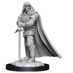 DUNGEONS AND DRAGONS NOLZUR'S MARVELOUS MINIATURES: W13 MALE HUMAN PALADIN