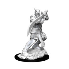 DUNGEONS AND DRAGONS NOLZUR'S MARVELOUS MINIATURES: W13 EFREETI