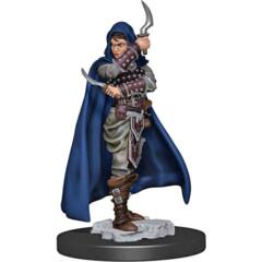 Pathfinder Battles: Premium Painted Figure - Human Rogue Female: W1