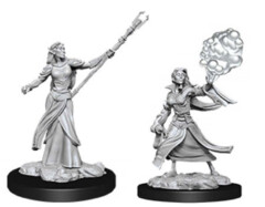 Female Elf Sorcerer W12