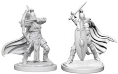 Female Knights/Gray Maidens DC