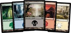 Magic Random 80ct Land Pack