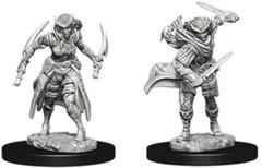 Nolzur's Marvelous Unpainted Miniatures - Tiefling Rogue (Female)