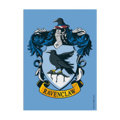 Dragon Shield Art Brushed Sleeves: Wizarding World - Ravenclaw - 100ct