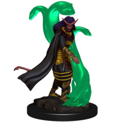 Icons of the Realms Premium Miniatures - Tiefling Sorceror (Female)
