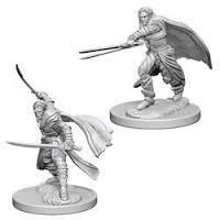 Dungeons And Dragons: Nolzur's Marvelous Unpainted Miniatures - Elf Male Rangers