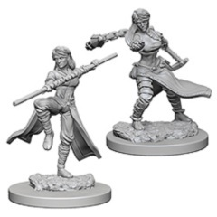 Nolzur's Marvelous Unpainted Miniatures - Human Monks (Female)