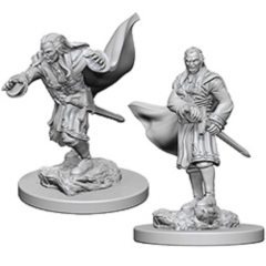 Dungeons And Dragons: Nolzurs Marvelous Unpainted Miniatures - Vampires