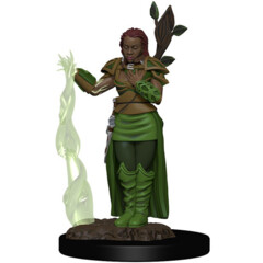 D&D Icons of the Realms Premium Miniatures: Human Druid