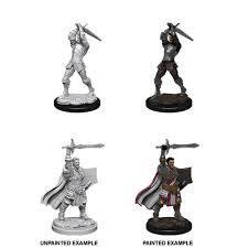 Nolzur's Marvelous Unpainted Miniatures: W12 Male Human Paladin