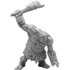 Hill Giant Lowland Warrior