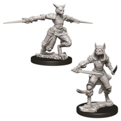 Nolzurs Marvelous Unpainted Miniatures - Tabaxi Rogue (Female)