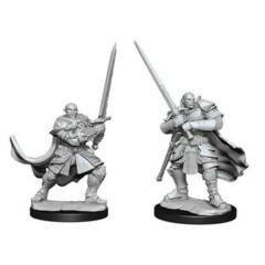 D&D Nolzur's Marvelous Miniatures: Half-Orc Paladin Male (Wave 15)