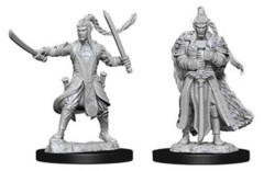 Nolzur's Marvelous Unpainted Miniatures - Elf Paladin (Male)