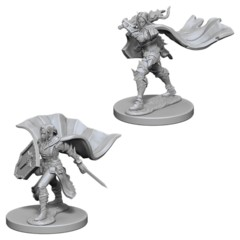 Pathfinder Battles Unpainted Minis - Elf Paladin (Female)