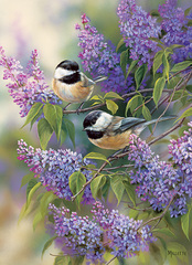 1000 - Chickadees and Lilacs