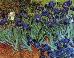 1000 - Irises (Van Gogh)