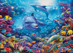 1000 - Dolphins at Play