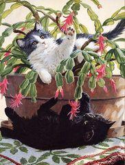 1000 - Cactus Kitties