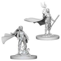 Nolzure's Marvelous Miniatures: Elf Druid Female