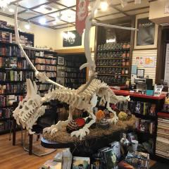 Dragon Skeleton - Kit
