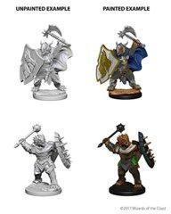 Nolzure's Marvelous Miniatures: Dragonborn Paladin