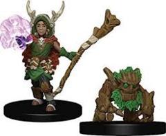 Wardlings: Boy Druid with Tree Companion