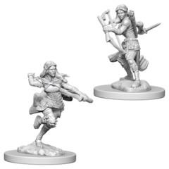 Nolzure's Marvelous Miniatures: Air Genasi Rogue Female