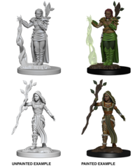 Nolzur's Marvelous Unpainted Minis - Human Female Druid
