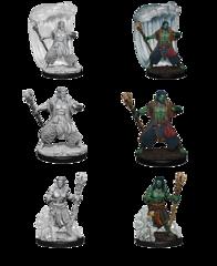 Nolzur's Marvelous Unpainted Minis - Water Genasi Male Druid